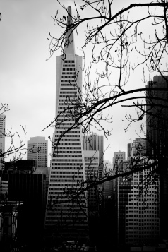 BW_StreetsofSF_038